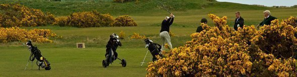 Links Golf - players at St Andrews, Scotland